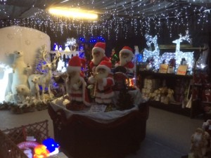 Come and see our fantastic range of Christmas products